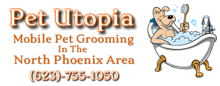 Mobile Dog Grooming North Phoenix